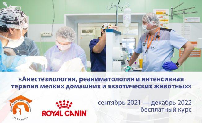 Анестезиология, реаниматология и интенсивная терапия мелких домашних и экзотических животных